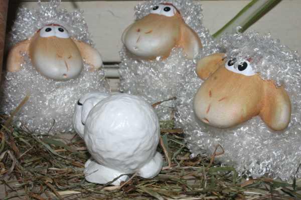 Sheepy findet neue Freunde