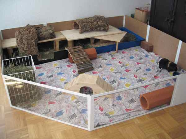 meerschweinchen info klappgehege. Black Bedroom Furniture Sets. Home Design Ideas